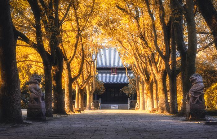 中国古建筑文献研究的方法与作用