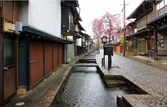 日本这个美丽乡村,成为了社区营造成功典范!