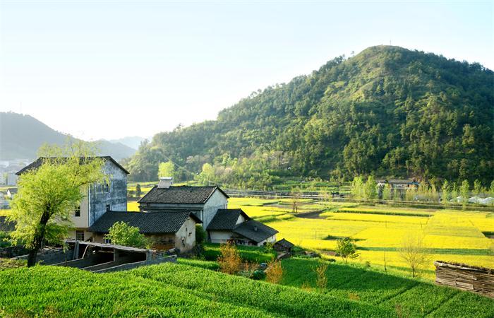 如何做田园综合体的圈层开发?