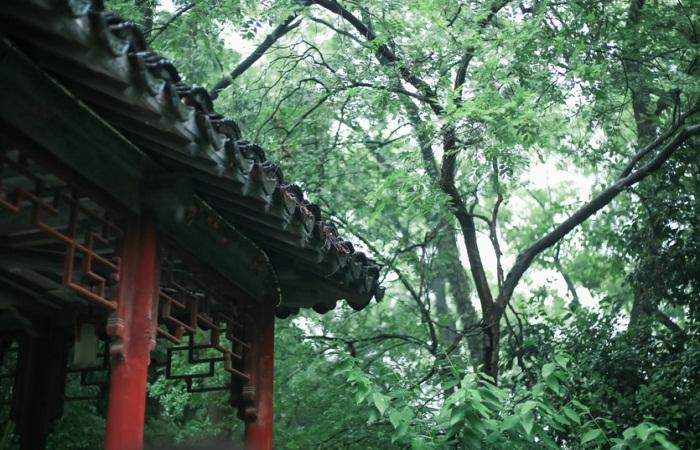 中国古典园林与现代西方园林的融合