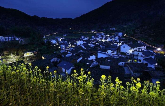 关于加快发展美丽乡村夜经济的指导意见!