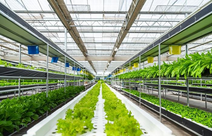新时代数字农业如何发展?赵春江院士这么说
