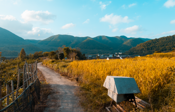 古代中国农业的历史发展进程