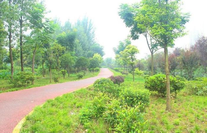 东源县半江镇森林体育公园一期工程招标公告