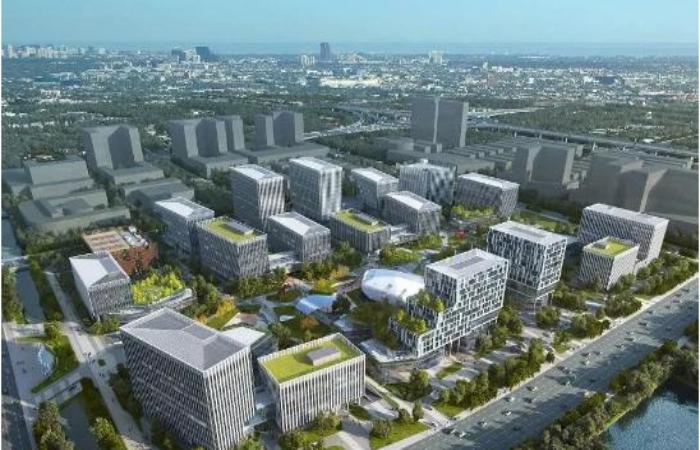 南通创新区拓展区控制性详细规划项目招标公告