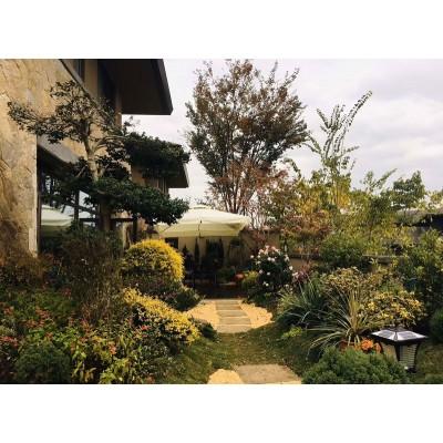 义乌人家小院景观设计案例