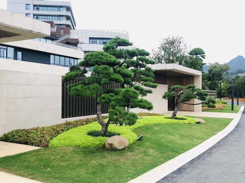 安吉竹博园别墅庭院景观设计