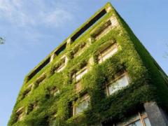 新型绿色建筑材料的应用现状及发展趋势