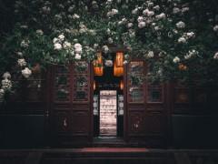 中国古典园林中的常用木材有哪些?