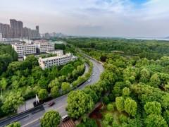 大力推动绿色建筑发展势在必行
