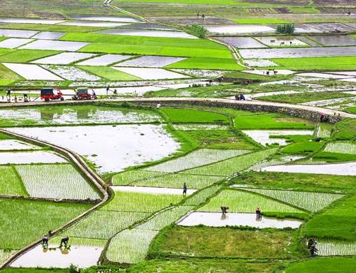 中国悠久的农耕文化——创意农业发展的源泉