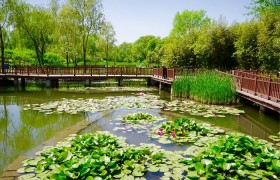 《北京海淀三山五园国家文物保护利用示范区建设实施方案》发布