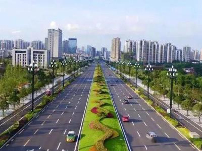 余姚市府前路东西两端绿化提升工程公告