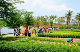 加强农耕文化教育 建立常态化运作机制