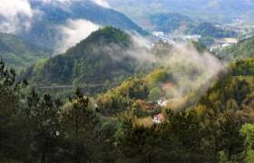 国务院:将一定的治理面积用于生态旅游、森林康养等相关产业开发