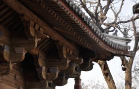 角科斗拱——中国古建筑营造技艺