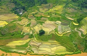 中国古代农耕文化的意识传统