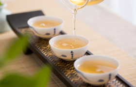 白茶的产区及历史